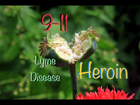 9-11 was about Lyme Disease-you are in a plague and don't know it (warning: some cussing)
