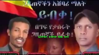 Free Andargachew Tsegie, Andenet Haile New