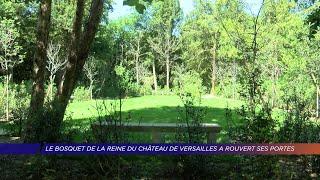 Yvelines | Le bosquet de la reine du château de Versailles a rouvert ses portes