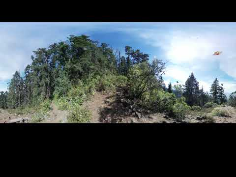Phonography 360 : Monarca Santuario - Michoacan (19.671648, -100.294482) - Ambisonic 360 Sound