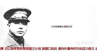张学良为何下令不抵抗:真和蒋介石无关