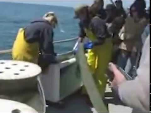 Marine Science Technician Certificate Program