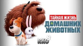 """""""RAP Кинообзор 8"""" - Тайная жизнь домашних животных"""