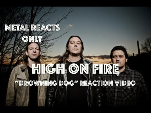 "HIGH ON FIRE ""Drowning Dog"" Reaction Video 