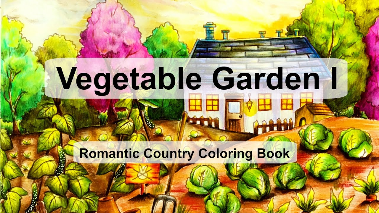 Vegetable Garden I