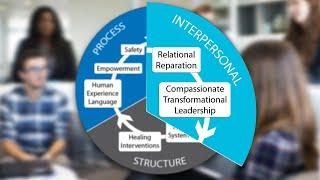 Trauma-Informed Framework