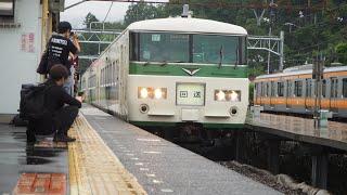 185系 快速鎌倉あじさい号 青梅駅入線 6/19