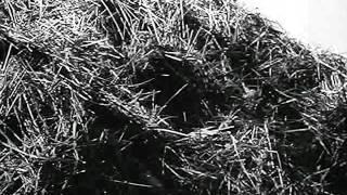 Sniper - уч.фильм снайперов вермахта