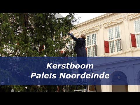 Kerstboom Paleis Noordeinde