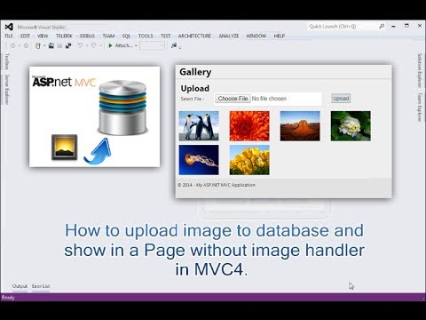 How to upload image to database and show in a page without image handler in MVC.