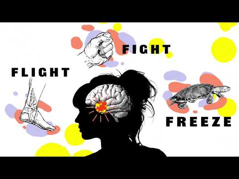 Fight, Flight, Freeze - How Anxiety Affects You