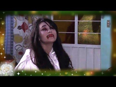 Alerta en Halloween | La rosa de Guadalupe