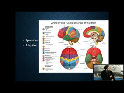 27th January 2017: Know thyself, Know God - a Neurologist's point of view by Dr. Ali Marvasti