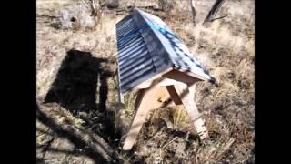 Winter Beekeeping Episode 2: last good day