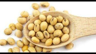 Soybeans se dahi banane ka easy method