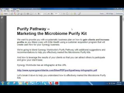 Synergy Worldwide – Purify Pathway Marketing the Microbiome Purify Kit