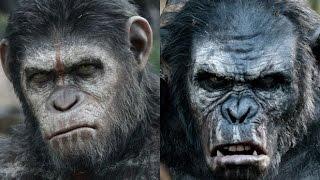 Top 10 Animal vs. Animal Attack Scenes