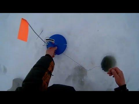 ловля судака на капкан видео