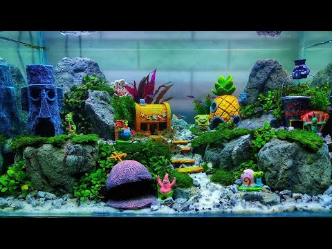 124 Aquarium Spongebob Paling Keren Youtube