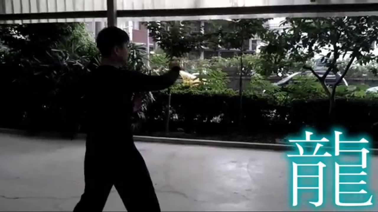 八卦掌小開門的拳譜與影片之比較 @ 八極拳協會科博館與健行教練場 :: 痞客邦