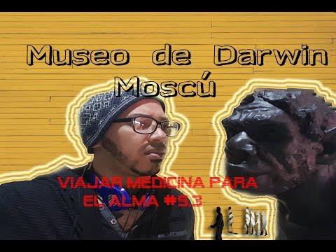 museo-de-darwin/-moscú/-viajar-medicina-para-el-alma-#5.3