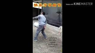 Смешные видео #3