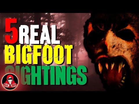 5 Creepy REAL Bigfoot Sightings
