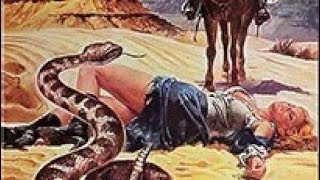 Burn Baby Burn (Western Movie, English, Classic Cult Movie, Full Feature Film) free western movies