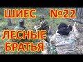 ШИЕС №22  Лесные братья