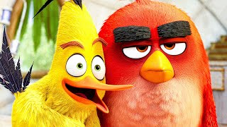 THE ANGRY BIRDS MOVIE 2 All Movie Clips + Trailer (2019)