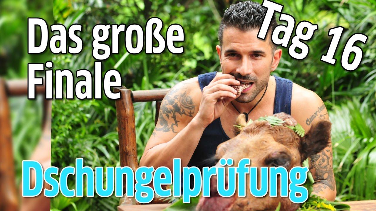 Dschungelcamp 2017 Dschungelprufung Tag 16 Das Grosse Finale