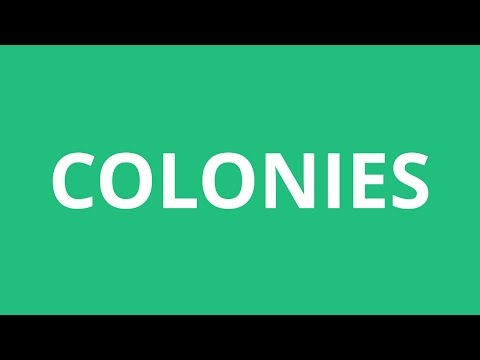 How To Pronounce Colonies - Pronunciation Academy