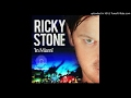 Ricky Stone - In Miami (King Roc Remix)