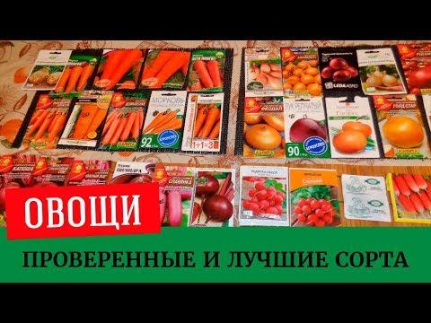 🍆🥕Выбираем семена, проверенные и лучшие сорта, редис, лук, свекла, морковь, сельдерей🥕🍆