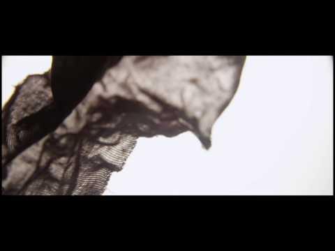 KR3TURE -  Shapeshifter (ft. Zoe Boekbinder & Chris Lynch)