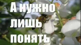 Repeat youtube video Моему виртуальному Другу.flv