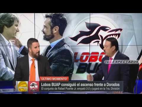 LOBOS BUAP sube a primera division - Futbol Picante