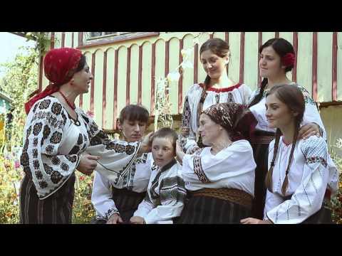 Cornelia Stefan - Dragile mele surori