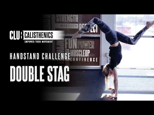 DAY 28 - Double Stag Handstand