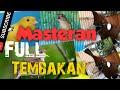 Masteran Paling Dicari Juri Dan Kicau Mania Kenari Gacor Cililin Kapas Tembak Gacor Prenjak  Mp3 - Mp4 Download