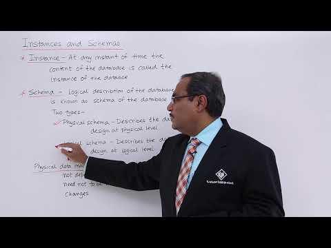 DBMS - Instances and Schemas