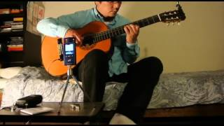 Maxwell S Silver Hammer Fingerstyle Guitar