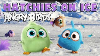Angry Birds TOYS | Hatchies on ice!