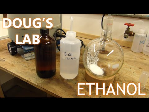 Ethanol and the Hydrolysis of Ethyl Acetate