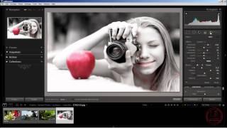PRO Lightroom: обработка фотографий. Выделение цветом. Интересные уроки. Fotoshkola.net