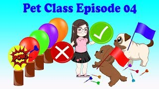 Learn Colors With Balloon | Pets Class 004 | Tho Nguyen Animation thumbnail
