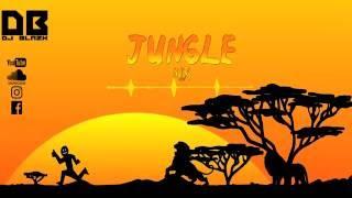 JUNGLE MIX-DJ BLAZX