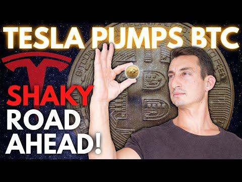 TESLA BUYS BITCOIN! TOO LATE TO BUY BTC? | Volatile Road Ahead For Bitcoin (Elon Musk Tweets)