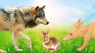 КАК ЗАЯЦ СПАС ВОЛКА Никто не хочет помочь Мультфильмы про животных для детей