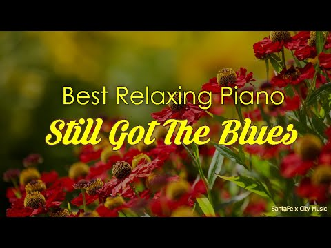 Still Got The Blues ⭐ Best relaxing piano, Beautiful Piano Music | City Music